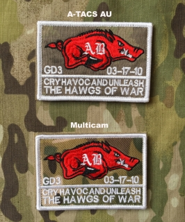YJPF Hawgs of War Patch