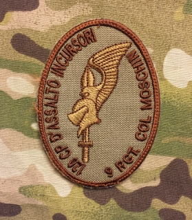 LaPatcheria 9 Rgt. Col Moschin 120 Compagnia D'Assalto Incursori Patch